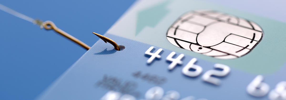 Signature card services bg colourmoves